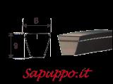 Cinghie trapezoidali sezione 3V