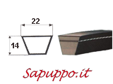 Cinghie trapezoidali sezione -C